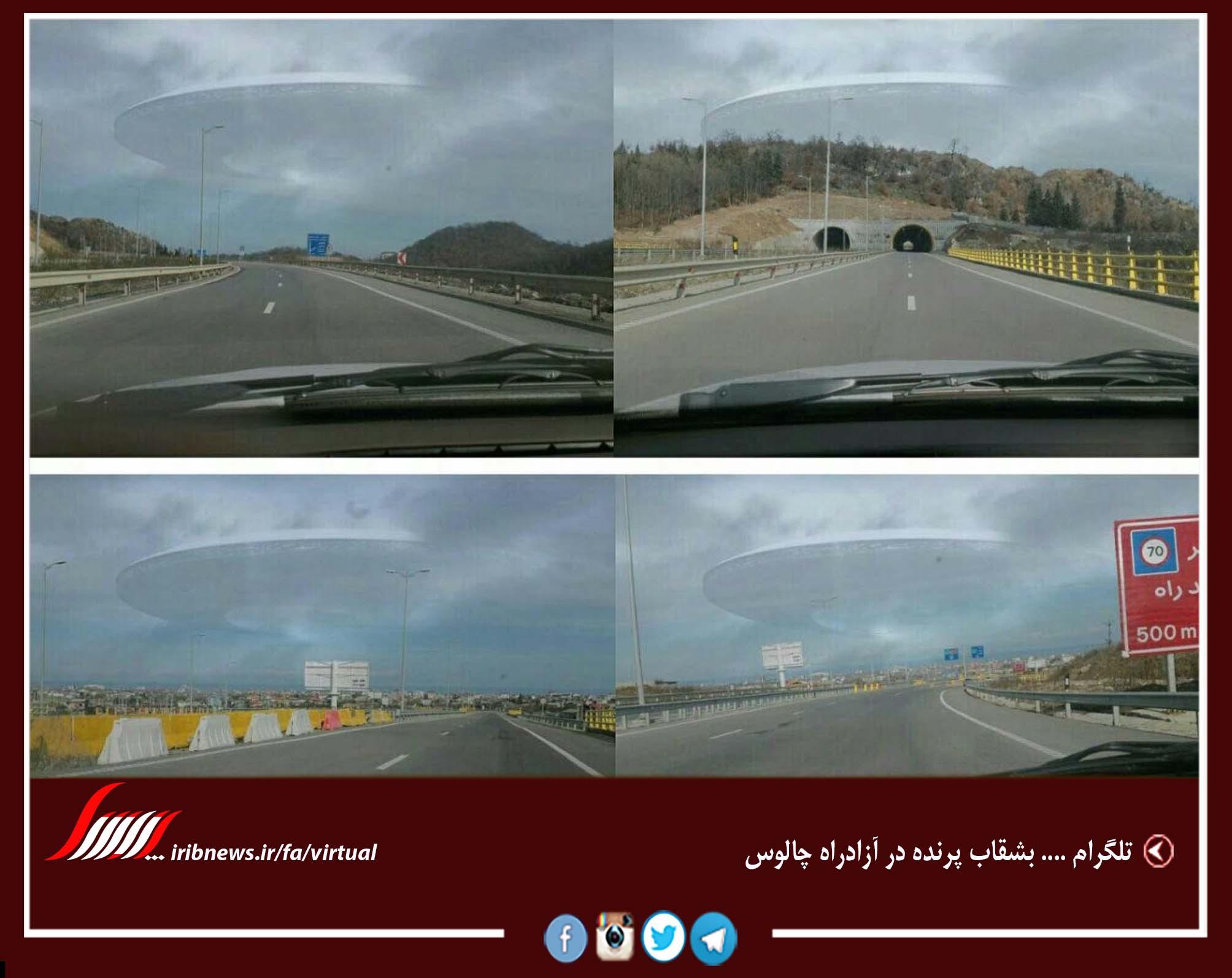 کمپین ایرانی «تحریم سفر به کشورهای حامی داعش»