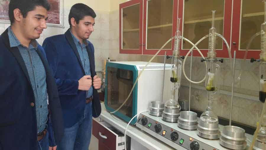 تولید آزمایشگاهی «داروی گیاهی زگیلسوز» آغاز شد