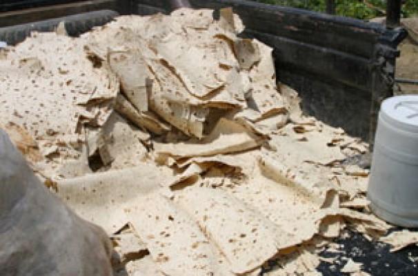 هشدار درباره افزایش ضایعات 30 درصدی نان