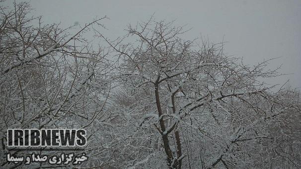 یک روز برفی ارمغانخانه استان زنجان