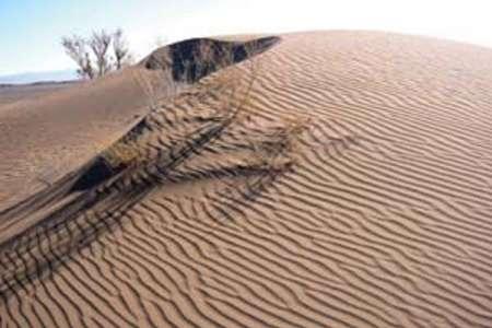 بیش از 200 هزار هکتار عرصه های منابع طبیعی گناباد نیازمند بیابان زدایی