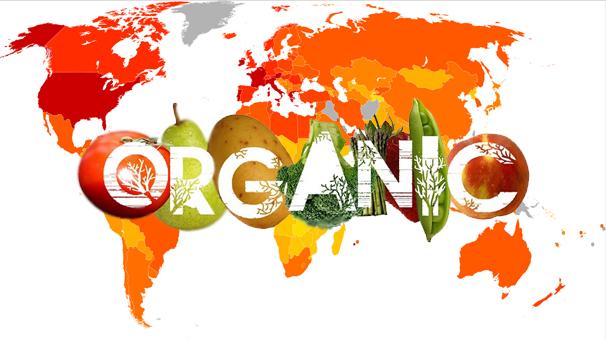 محصولات ارگانیک دنیا را، چه کشورهایی میل می کنند؟