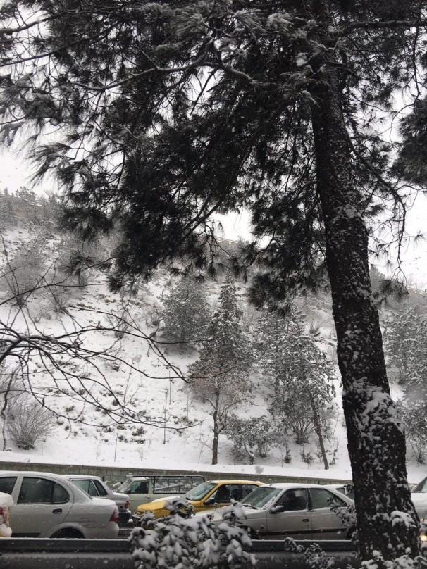 کلید  در تهران بارش برف در تهران ، صبح امروز | - کلید واژه ها: تهران