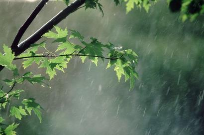 بارش باران در 11 شهرستان خراسان رضوی