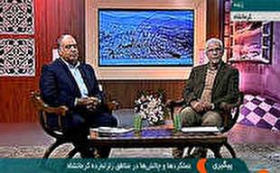 استاندار کرمانشاه: از بانک ها وبیمه ها گلایه داریم