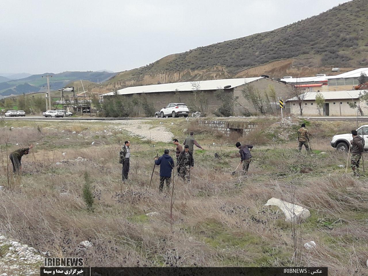 کاشت نهال در حاشیه جاده آزاد شهر به مینودشت