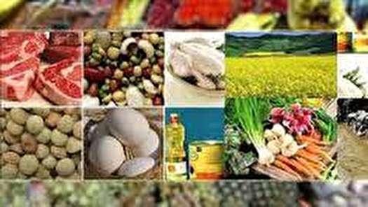 روایت بانک مرکزی از ارزانی و گرانی موادخوراکی
