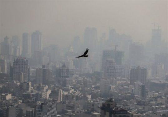 میانگین شاخص کلی کیفیت هوای مشهد در وضعیت هشدار