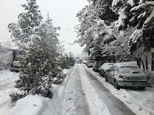 تصاویر زیبا از بارش برف در تهران