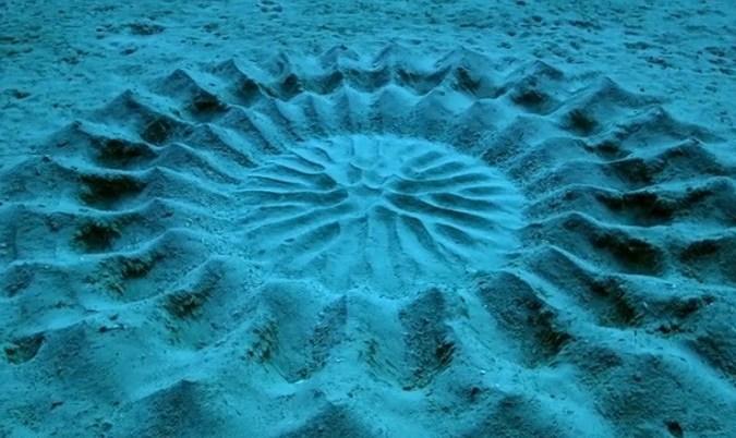رازگشایی از عجیب ترین مهندسی در کف اقیانوس!