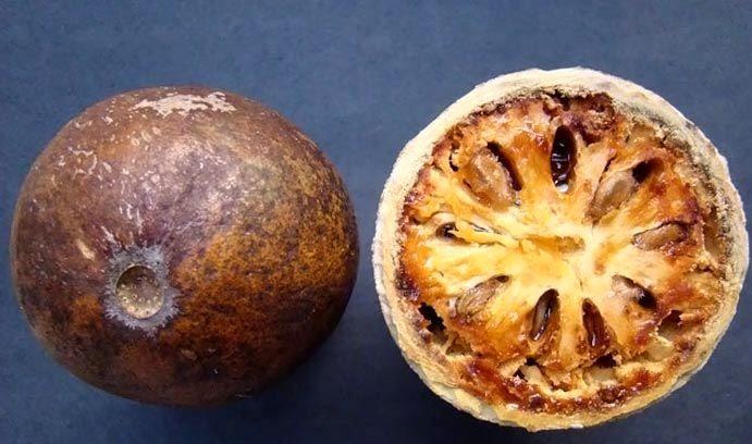 میوههای عجیبی که تاکنون ندیدهاید