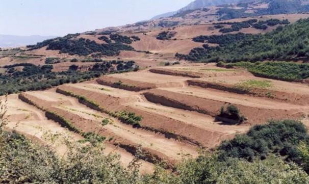 سالانه ۲ میلیارد تن خاک فرسایش مییابد