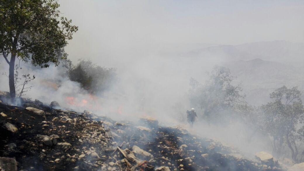 مهار کامل آتش قبل از ورود به منطقه حفاظت شده خامین