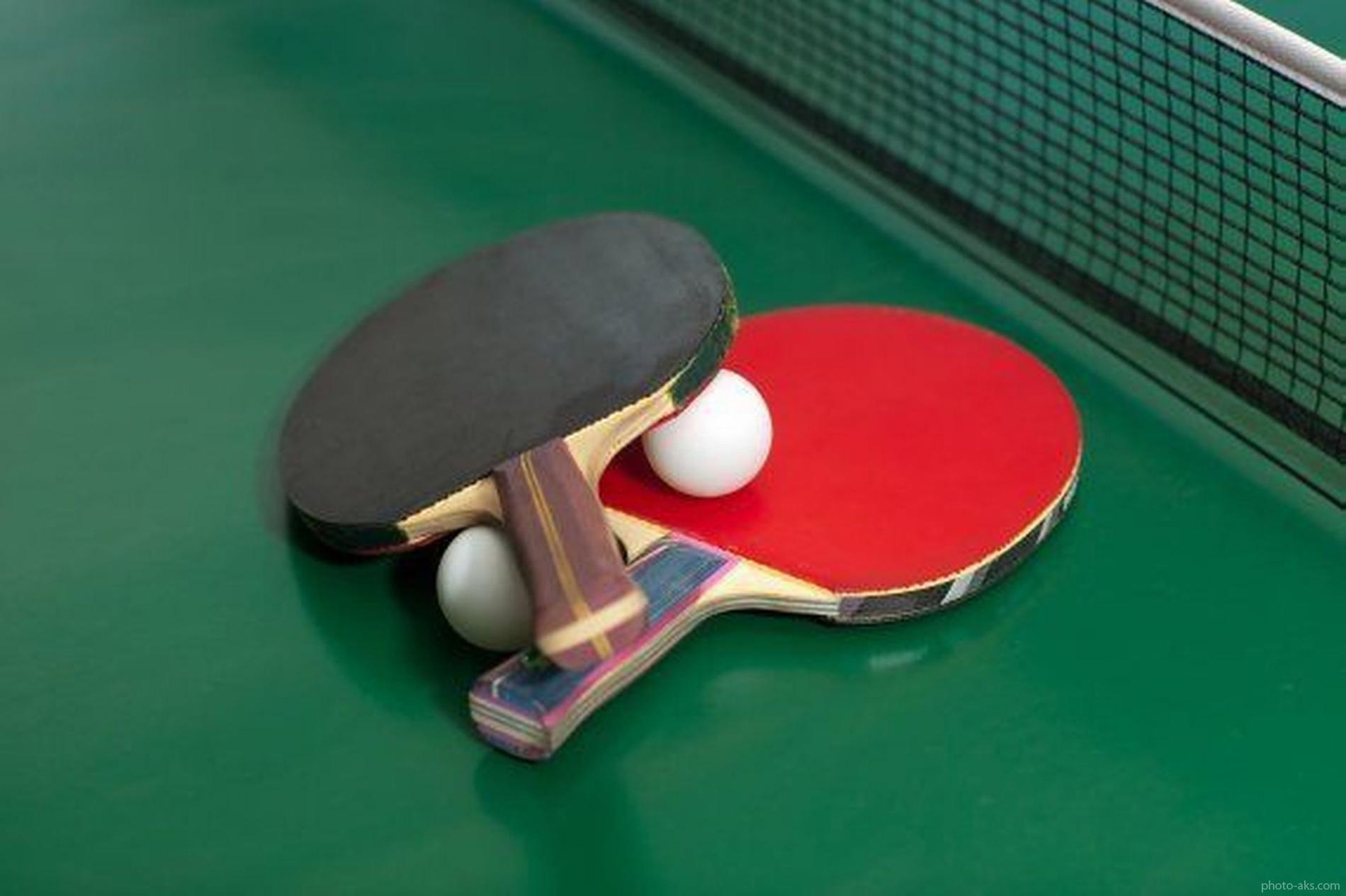 کسب مدال طلا توسط نماینده خراسان شمالی در مسابقات تنیس روی میز