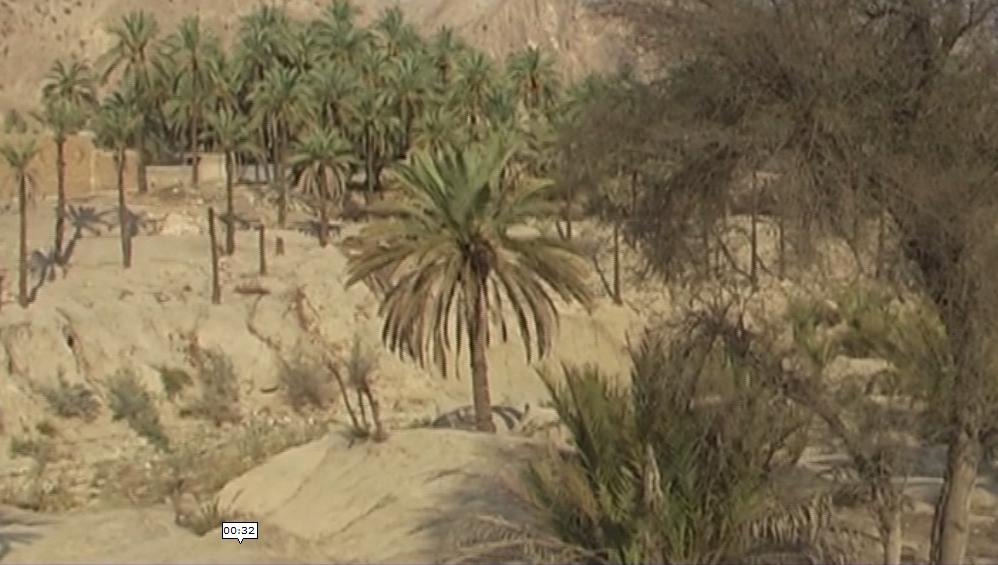 خشکسالی شدید در روستای رود فاریاب دشتستان