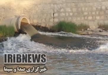 گزارش مکتوب؛ مرگ تدریجی آبسنگهای مرجانی خلیج فارس