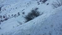 بارش برف در گردنه های قزوین + فیلم