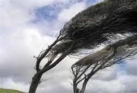 افزایش شدت وزش باد در خراسان رضوی