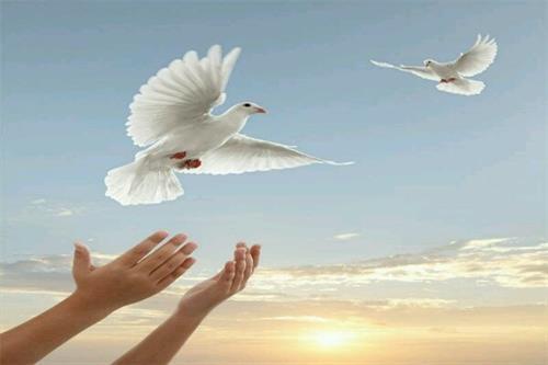 کمک میلیونی به جمعیت هلال احمر داراب