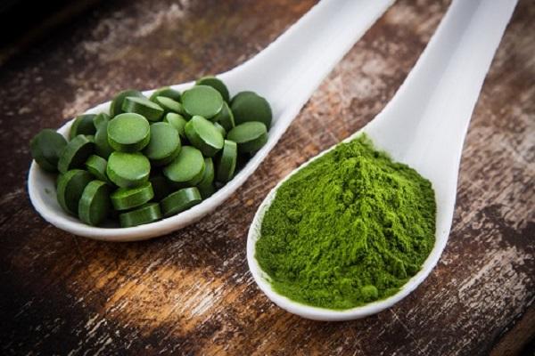 جلبک، گیاه ثروت آفرین