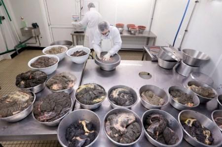 ارائه تسهیلات به پرورش دهندگان ماهیان خاویاری