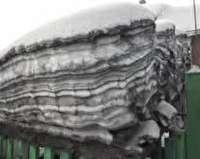 نگراني از بارش برف آلوده در بخش هایی از سیبری