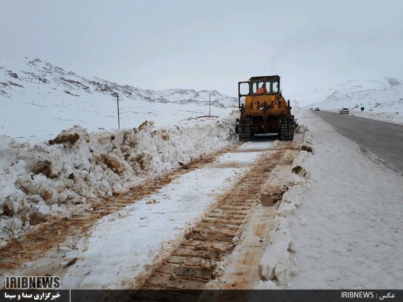 3115862 650 - بارش برف در سپیدان + عکس