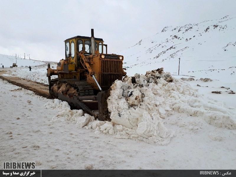 3115863 564 - بارش برف در سپیدان + عکس