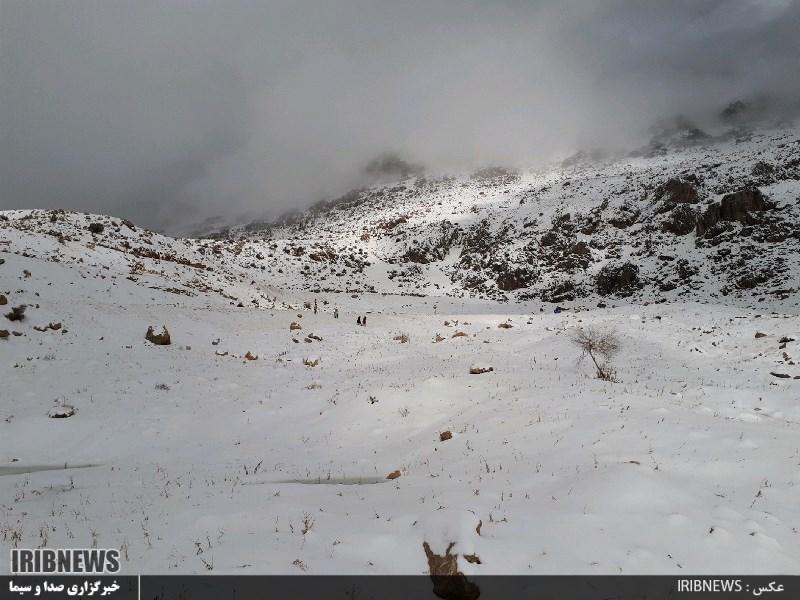 3115865 861 - بارش برف در سپیدان + عکس