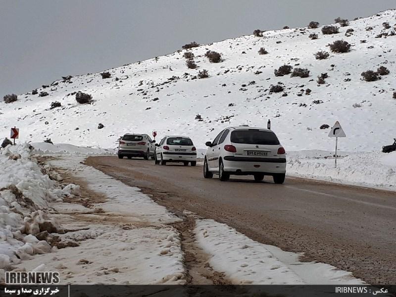 3115866 728 - بارش برف در سپیدان + عکس