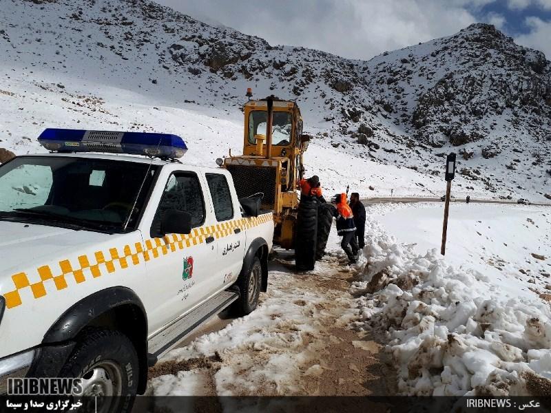 3115868 387 - بارش برف در سپیدان + عکس