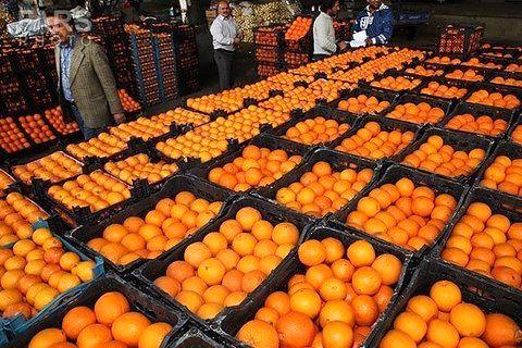 توزیع میوه شب عید از ۲۵ اسفند ؛ در شیراز