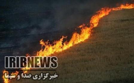 آتش سوزی گسترده در مراتع گولجک