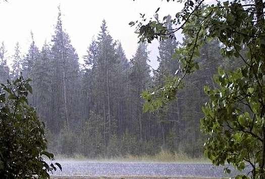 باران در نواحی مختلف