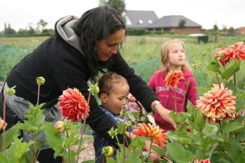 نتیجه تصویری برای کودکان در مزارع گل
