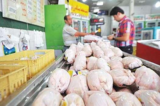 عرضه مرغ منجمد 8900 تومانی برای تنظیم بازار