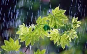 نفوذ سامانه هوای بارشی به گیلان از فردا