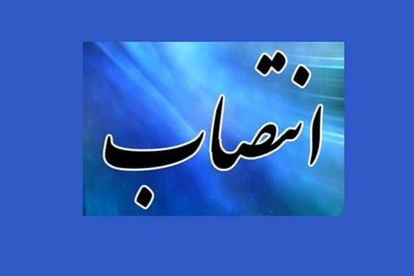 مدیر عامل شرکت ملی صنایع مس ایران منصوب شد