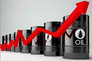 قیمت سبد نفتی اوپک از ۷۲ دلار فراتر رفت - 0