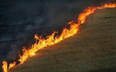 با آغاز فصل گرما خطر آتشسوزی در کمین مراتع البرز