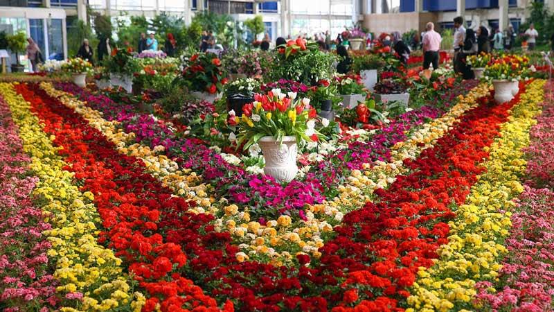 گشایش هجدهمین نمایشگاه گل و گیاه در مشهد