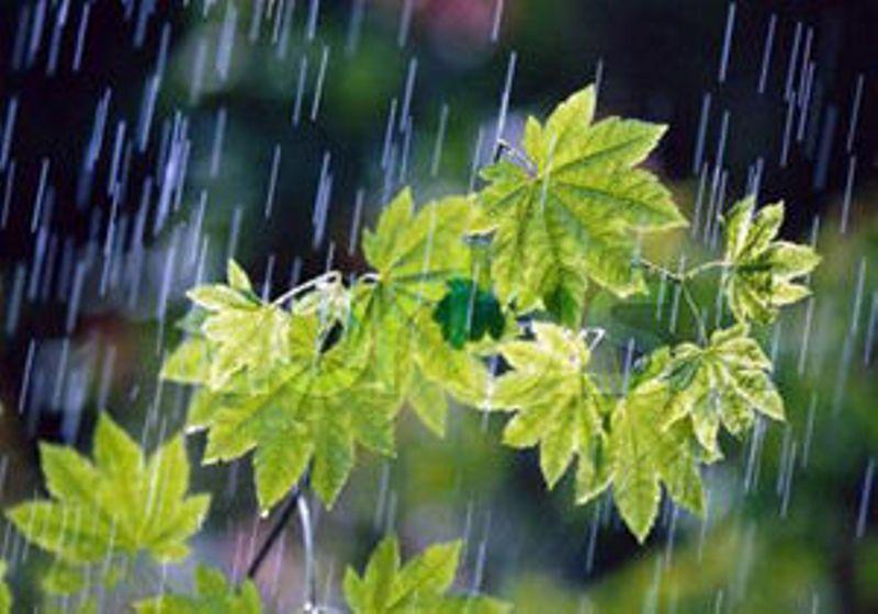 حجم بارش های کشور به ۳۳۳ میلی متر رسید