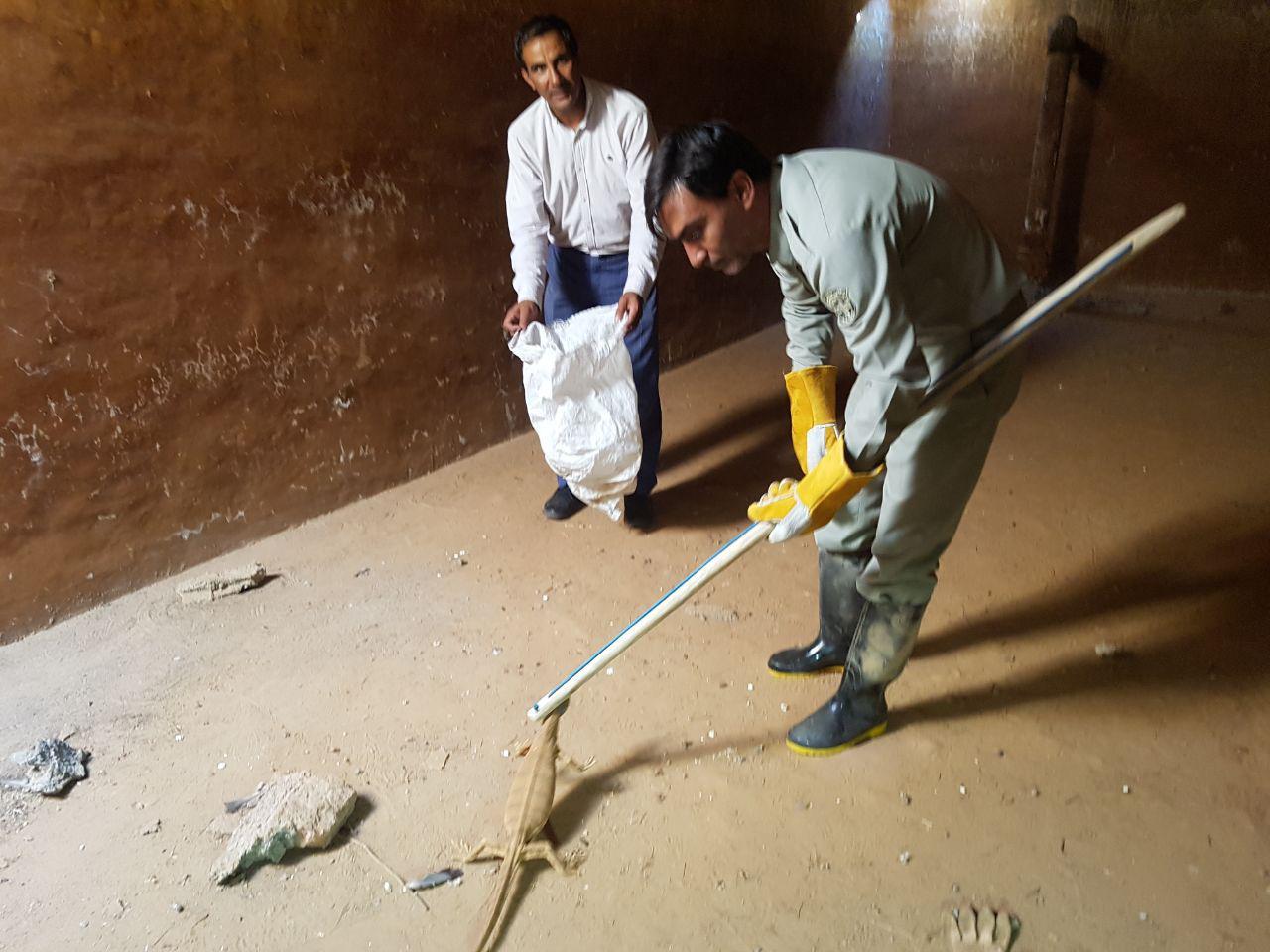 نجات 2 بزمجه گرفتار شده در حوض انبار متروکه زیرکوه + عکس