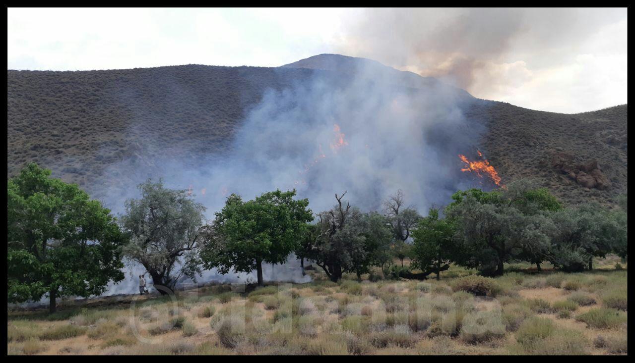 مهار آتش سوزی در روستای بیدان پنج