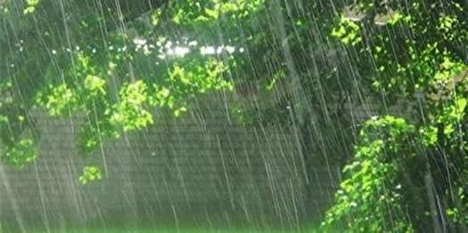 ادامه بارشها در نوار شمالی