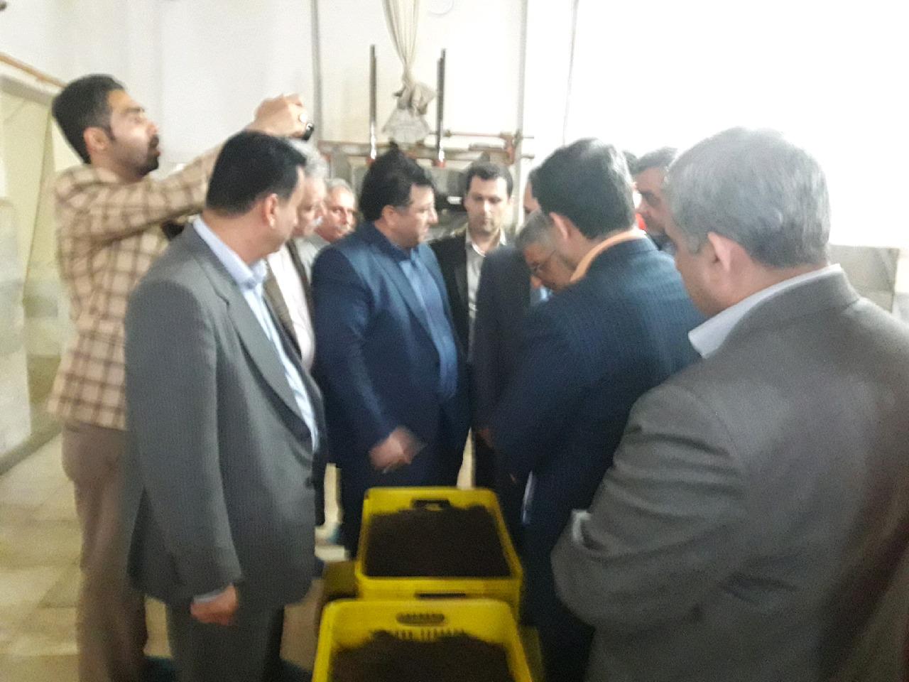 برنامه شناسه دار شدن چای ایرانی