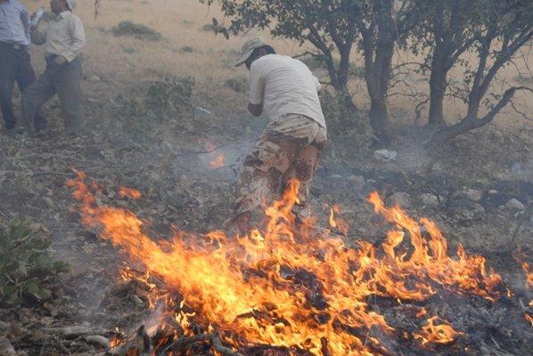 مهار آتش در جنگلهای باشت نیازمند اعزام بالگرد و نیرو