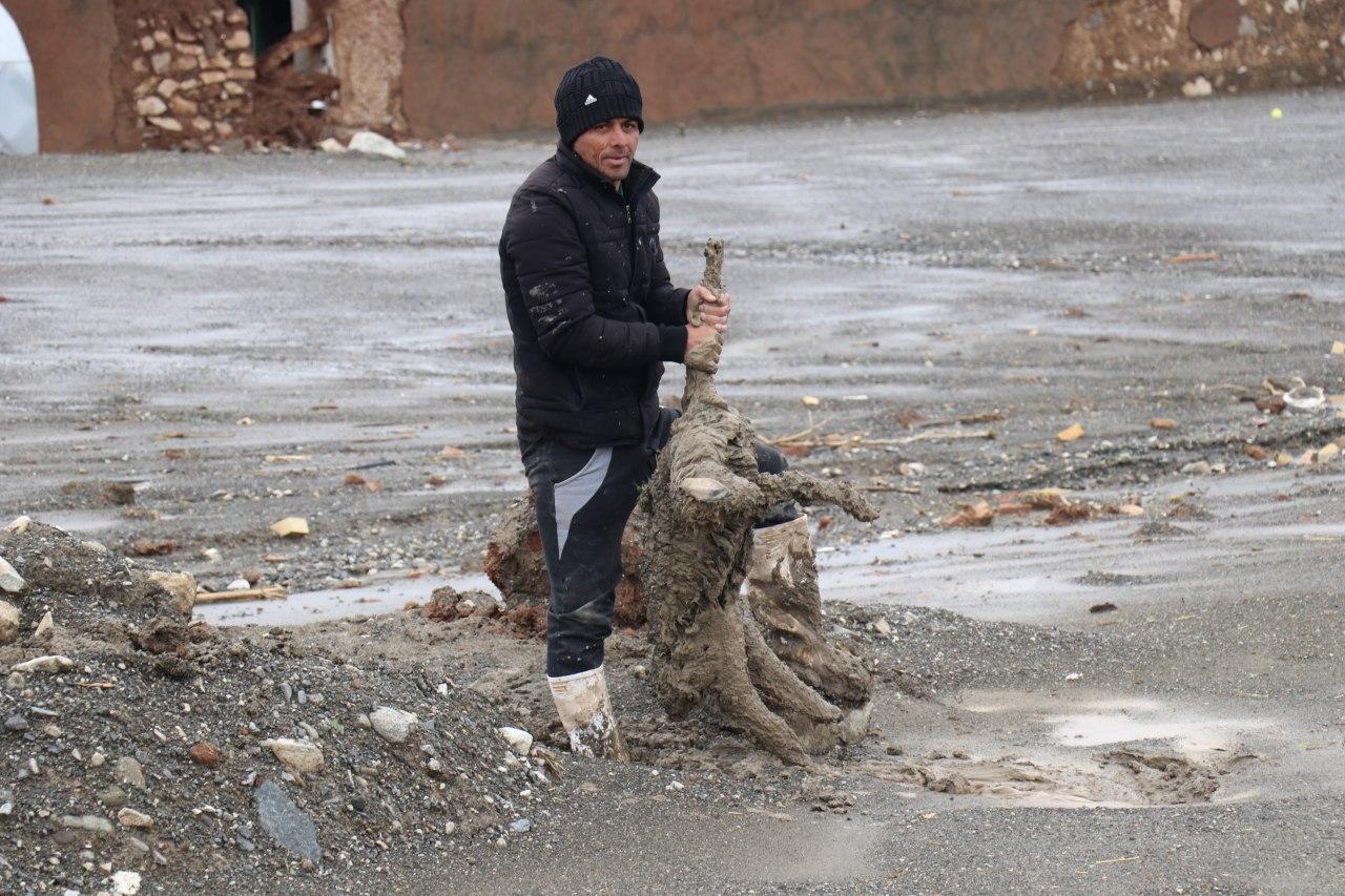 خسارت 2 میلیارد تومانی سیل به حوزه دام و طیور روستای بهانگر