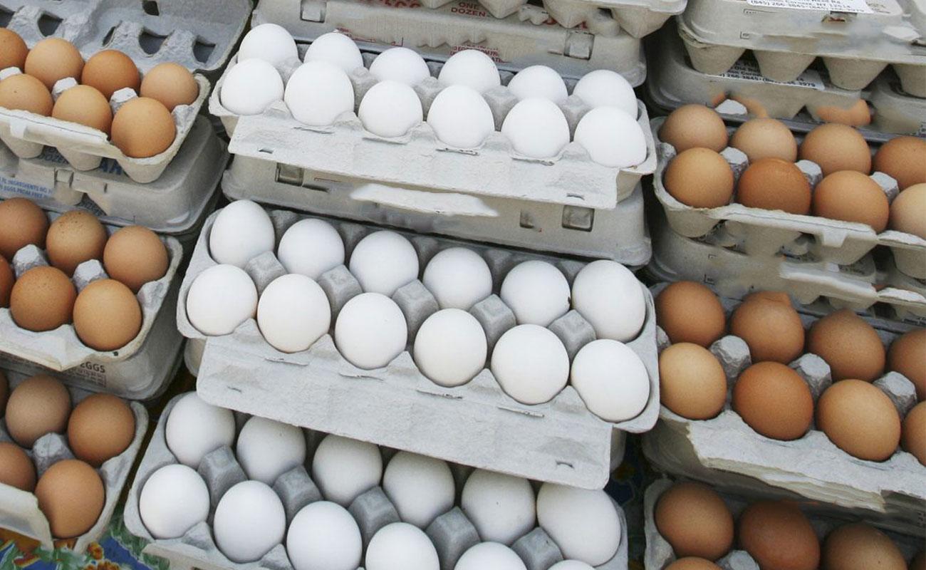 افزایش قیمت تخم مرغ تا ۴۸ هزار تومان