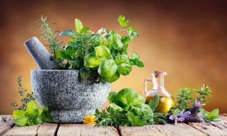 کدام گیاهان دارویی تأییدیهی علمی دارند؟